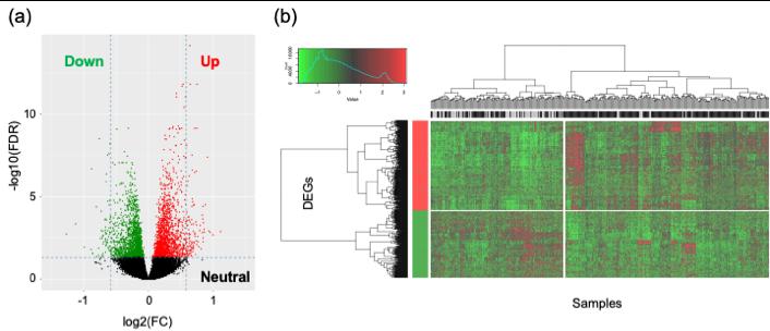 図2. 遺伝子発現差解析から同定された遺伝子群